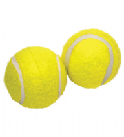 Rosewood Squeaky Tennis Ball 2PK